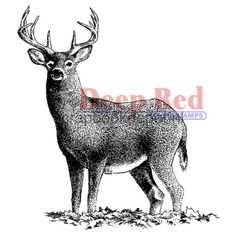 Buck Deer Deep Red Cling Rubber Stamp