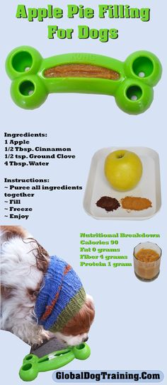 Looking for a healthy, low-calorie Kong recipe? Try this apple pie smoothie-kong/hollow toy recipe! Dog Biscuit Recipes, Dog Treat Recipes, Healthy Dog Treats, Dog Food Recipes, Homemade Dog Cookies, Homemade Dog Food, Kong Dog Toys, Pet Toys, Apple Pie Smoothie