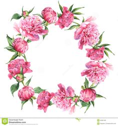 Wonderful Absolutely Free Peonies vintage Suggestions The peony is usually insanely wonderful in bloom via spring season to help summer—having luxurious foliage Flower Circle, Flower Frame, Wreath Watercolor, Pink Watercolor, Floral Frames, Arte Fashion, Peonies And Hydrangeas, Wreath Drawing, Arte Floral