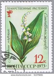 Image result for lily of valley post stamps