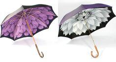 illesteva-guarda-chuva