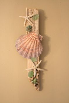 Shell and starfish wall decor,,,could make from things we find on the beach