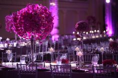 Gorgeous orchid balls