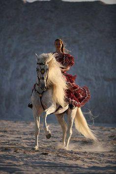 Caballo, white beauty, horse, hest, dust, sand, animal, female, woman, dress, beautiful, gorgeous, photograph, photo
