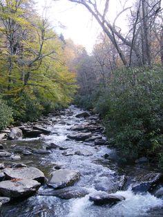 Hiking Smoky Mountains TN