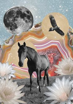Cosmic Honey poster // Collage artwork by @raychponygold // #art #collage #horse #magic