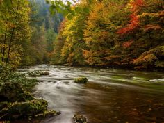 # Harz Germany Autumn