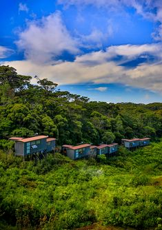 Sinharaja Rain Forest Eco Lodge is an Eco Resort located inside the Sinharaja Rain Forest and it is an ideal base to explore Sinharaja Rain Forest Forest Hotel, Like4like, Villa, Graphic Design, Tree Houses, Explore, Architecture, House Styles, Places