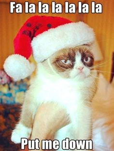 Scrooge Kitty