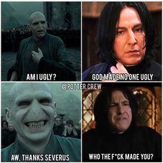 Harry Potter Mems, Harry Potter Girl, Harry Potter Comics, Harry Potter Severus Snape, Harry Potter Artwork, Harry James Potter, Harry Potter Pictures, Harry Potter Cast, Harry Potter Universal