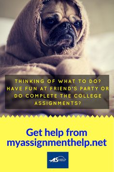 Just enjoy your weekend with friends on parties! Don't stuck with college assignments! More details Visit us: http://www.myassignmenthelp.net/ #Assignment #AssignmentHelp #Enjoy #Party #Friends #Holidays