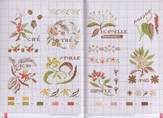 (1) Gallery.ru / Фото #1 - Mango Pratique - Fleurs et plantes aromatiques - velvetstreak