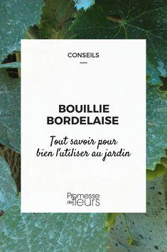 Bouillie bordelaise : tout savoir pour bien l'utiliser au jardin #jardin #jardinage #maladie #traitement