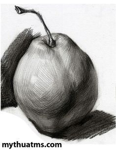 Pear Drawing, Drawing Apple, Pencil Sketch Drawing, Pencil Art Drawings, Realistic Drawings, Drawing Faces, Natural Stills, Black And White Photography Portraits, Reference Photos For Artists