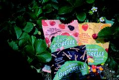 """""""Spesso vi racconto del mio amore per le caramelle, soprattutto di quelle alla frutta. Si, posso ammettere tranquillamente che una parte di me è rimasta un pò bambina e un pò capricciosa."""" http://www.teresamorone.com/2016/07/18/dietorelle-i-miei-momenti-piu-dolci/ http://bit.ly/29NCSyC #Dietorelle #stevia #DMoments #food #lifestyle #theFashiondiet #lifestyleblogger #fashionblogger"""