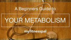 A Beginner's Guide to Your Metabolism