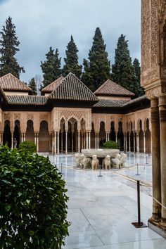 Patio of the Lions, colonaides with a fountain atop lions, with birds singing and flying in circles around the plaza.  Birds play here, within the Moorish palace the Alhambra in Granada