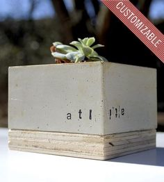 Custom Concrete Cube Planter