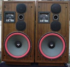 Cerwin Vega D9 Speakers, I have their little brother, the D3's in my garage.  Great speakers.