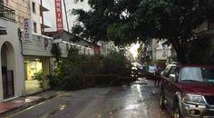 Καλό...χειμώνα- Ο καιρός ξύπνησε με βροντές και αστραπές την Πάτρα- Δέντρα στο δρόμο και σε αυτοκίνητα- ΦΩΤΟ