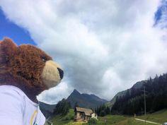 Der Urlaubär in den Alpen in der Schweiz ...