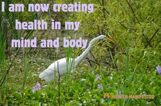 I am now creating health in my mind and body - Health Manifested  #healthmanifested #creatinghealth #healthymindbody  #healthyhappylife #wellnessjourney #nourishyourself #fitforme #justbreathe #lookwithin #inspirationdaily  #Mindset #Success #Inspire #ThinkBig #Believe #Motivate #instamotivation #life #LOA #lawofattraction #power #motivation #inspiration #quotes #dreams #morningmotivation #hope #havemotivation #onlymotivation #IAm #raiseyourvibrations #mindbodyspirit #mindbodysoul