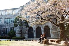 Ewha Womens University is located in Seoul, Korea. 20% of Ewha's classes are taught in English.The university offers a large range of majors and minors including nursing and Korean language. Founded in 1886 it is famous for providing quality educational opportunities for women.