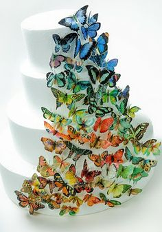 edible wafer paper butterflies on white cake
