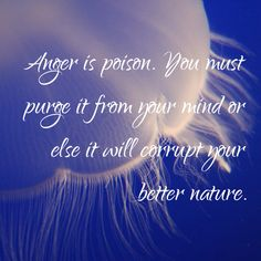 ANGER MANAGEMENT QUOTES of hopes this series will help those with issues to find ways to help control the urges. Anger Management Quotes, Rancho Mirage, Coachella Valley, Anger Issues, Amazing Nature, Palm Springs