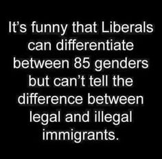 Laughing at liberals every day ~~ Liberal Hypocrisy, Liberal Logic, Liberal Left, Republican Gop, Liberal Agenda, Truth Hurts, It Hurts, Conservative Politics, Humor