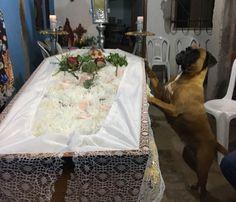 Belinha acompanhou velório de Telma Maria (Foto: Dionísio Neto / Arquivo Pessoal)