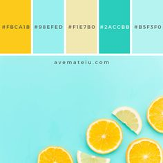 background background food Citrus fruits slices on table. Orange Color Palettes, Blue Colour Palette, Color Palate, Yellow Color Combinations, Yellow Color Schemes, Combination Colors, Paleta Pantone, Website Color Palette, Aesthetic Colors