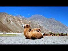 Nubra Valley - Jammu and Kashmir