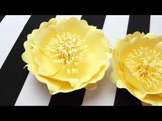 340 best paper flowers images on pinterest in 2018 paper flowers diy paper flower backdrop spring colors template hi everyone this is my tutorial video on how i make my template flower you do not need to purchase mightylinksfo
