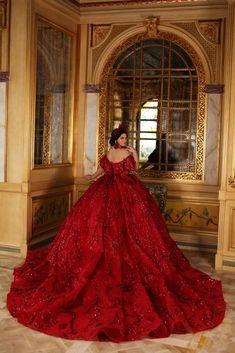 Extravagant Wedding Dresses, Blue Wedding Dresses, Princess Wedding Dresses, Bridal Dresses, Mariachi Quinceanera Dress, Red Quinceanera Dresses, Bella Wedding Dress, Quince Dresses, Ball Gown Dresses