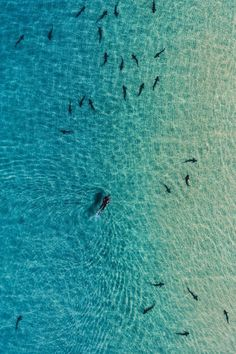 alecsgrg: Pacific ocean   ( by Kyle Kuiper )