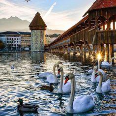 Lucerne ~ Switzerland  #Switzerland_Vacations
