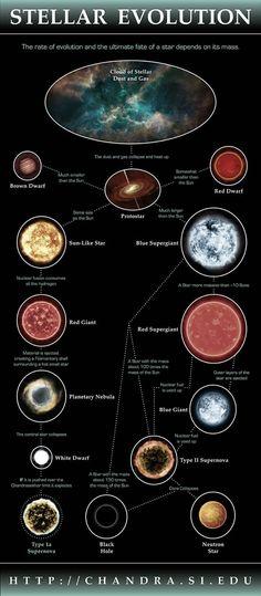 Infografica: Evoluzione Stellare - Infographic: Stellar Evolution