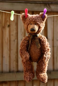 Ana Rosa (reminds me of Susanna Gretz teddy bear stories Old Teddy Bears, Vintage Teddy Bears, My Teddy Bear, Bear Doll, Cute Bears, Clothes Line, Belle Photo, Hanging Out, Photo Hanging