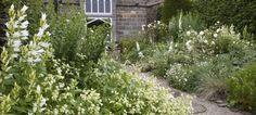 Pure Inspiration at York Gate Garden
