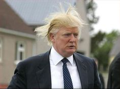 Maybe Donald's face isn't that funny but, oh, how I LOVE the hair!