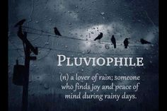 This is me! Pluviophile -- a lover of rain! This is why I moved to the Pacific Northwest :-)
