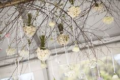 """another version of  """"chandeliers""""- Inspiration... maybe ivy with the hanging glass blubs."""