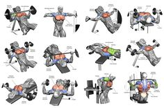Image result for chest exercises