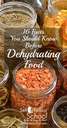 16 Facts you should know before dehydrating food #beselfreliant