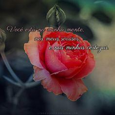 Frases De Amor Com Fotos De Rosas Sarita Pinterest