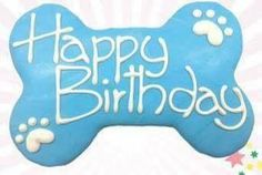 Birthday Club, Birthday Wishes, Dog Quotes, Animal Quotes, Dog Sayings, Cute Baby Dogs, Cute Babies, Happy Birthday Photos, Happy B Day
