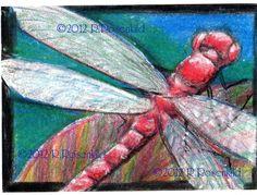 ACEO  Original Dragonfly miniature Prismacolor colored pencil painting art ...CaaT. $15.00, via Etsy.