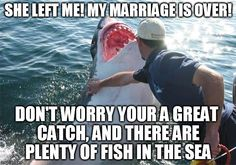 Flip through memes, gifs, and other funny images. Make your own images with our Meme Generator or Animated GIF Maker. Shark Meme, She Left Me, Plenty Of Fish, Meme Maker, Sea Fish, Don't Worry, Funny Images, Marriage Meme, No Worries