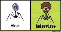 Medical Laboratory Jokes | Facebook | Virology and Bioinformatics from Virology.ca | Scoop.it